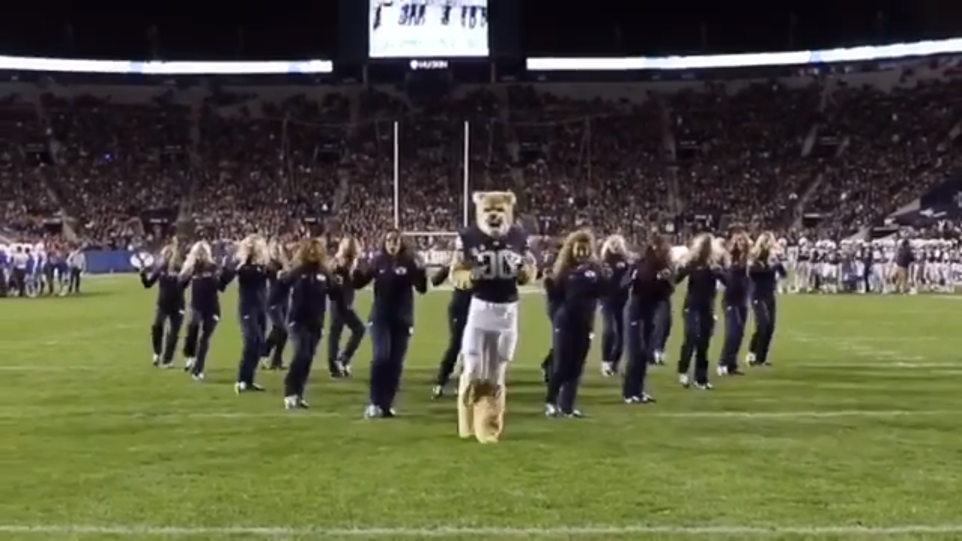 BYU's Cosmo the Cougar Went Viral After Dancing with Cougarette at a Football Game