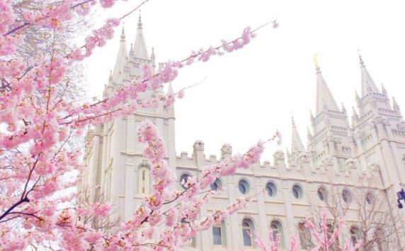 Temple Square is a popular tourist destination for cherry blossom in spring